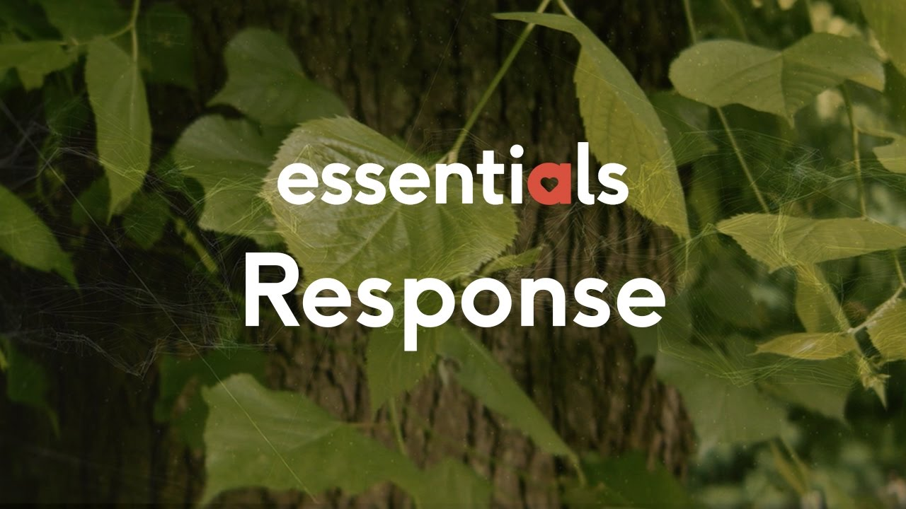 Essentials 5 – Response