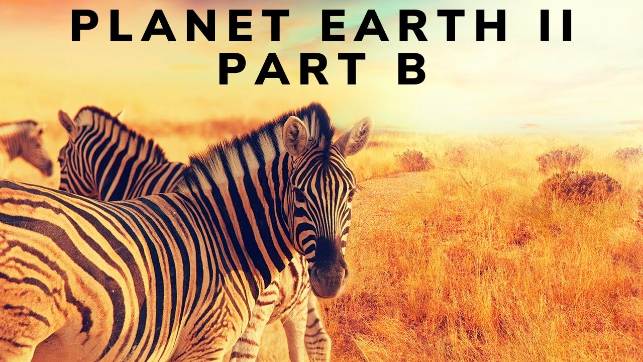 Planet Earth II Part B