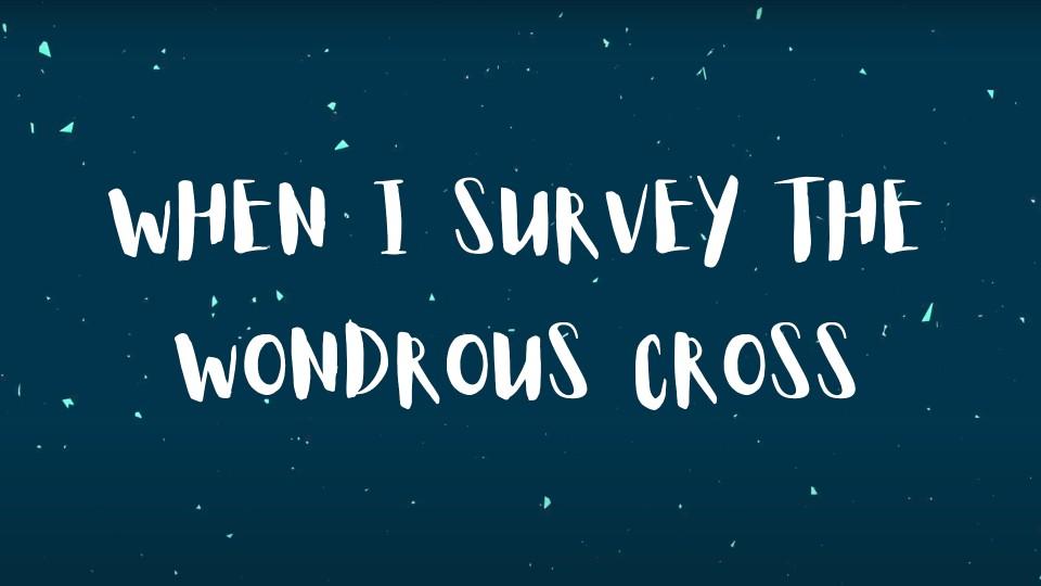 When I Survey